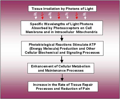 photon-absorption-chart-2.jpg